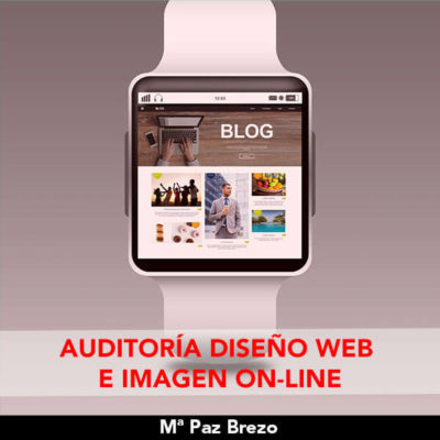 Auditoria web y imagen online