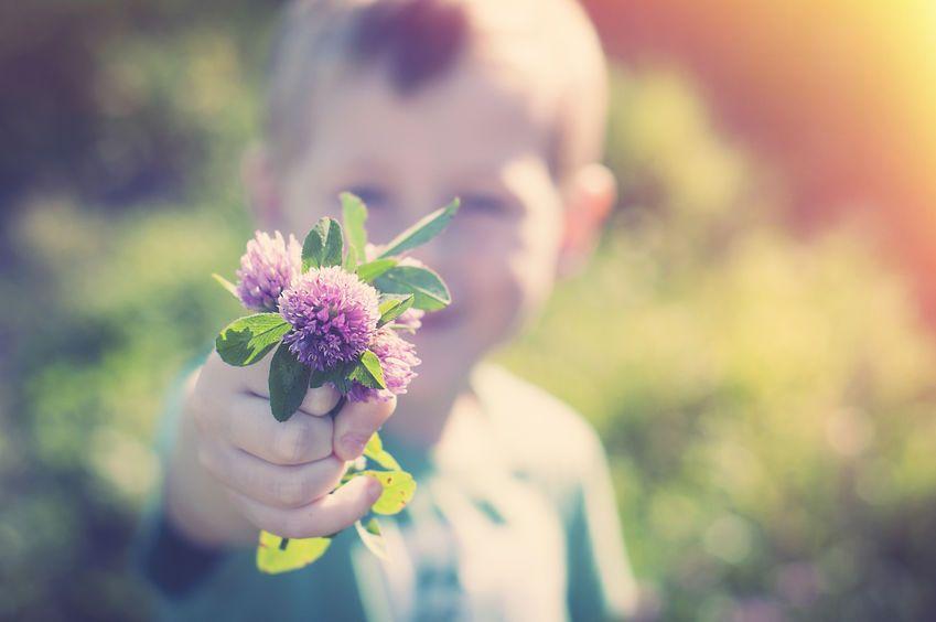 Responsabilidad Social Corporativa - El placer de dar